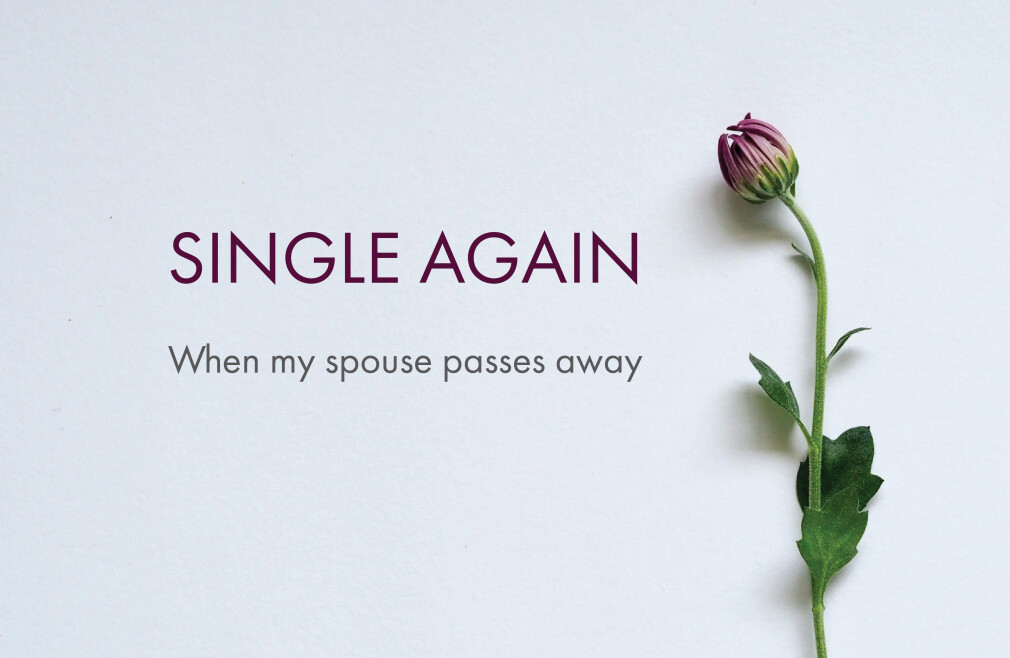 Care Ministry Seminar: Single Again